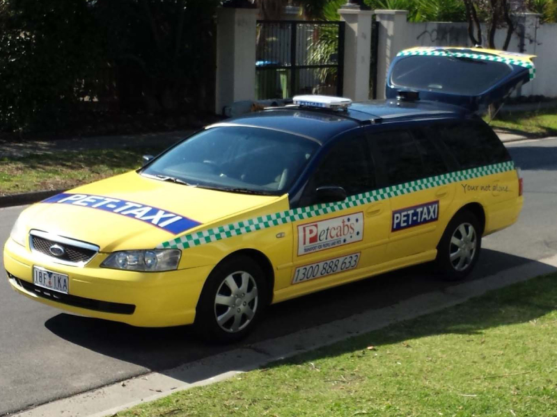 An image of a Petcabs taxi.